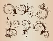 Curly Floral Elements for Design