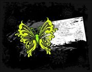 colorful abstract butterfly pattern 03