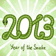 2013 Year of the Snake creative graphics 04 - vector materia