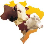 Brazil Map Whit Bulls Heads