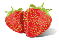 Strawberry Vector Free Download