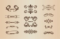 Vector Set of Floral Design Elements