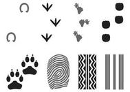 Prints And Traces Set