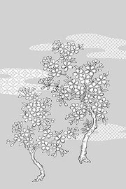 Japanese line drawing of plant material -25 Vector flowers (