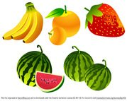 Free Vector Fruit