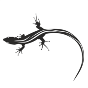Silhouette Animal Black & White Lizard