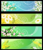 Beautiful Flower Banner