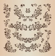 Éléments de Design Floral Vector Illustration ensemble