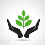 Eco green leaf in human hand