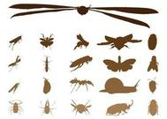 Insectes Silhouettes graphiques