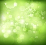 Green Bokeh Vector Illustration Background