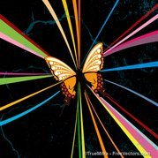 Abstracte Butterfly achtergrond