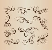 Vector Collection of Floral Design Elements