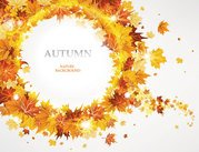 Maple Leaf automne Background