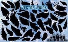 38 Vektor Wings