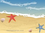 Summer Beach Vector Background Design avec l'étoile de mer et coquillages