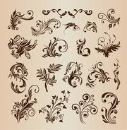 Beautiful Floral Elements for Design Vector Illustration Set