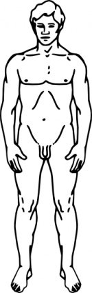 Line Drawing Of A Human Male