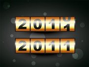 2 2011 New Year