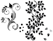 Floral Ornament Vector kostenloser Download