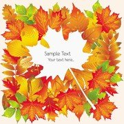 Beautiful Autumn Leaves Card 02