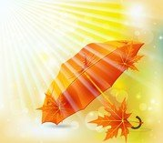 Beautiful Maple Leaf Umbrella 02