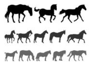 Horse Silhouettes Set