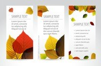 Beautiful Maple Leaf Bookmark 02