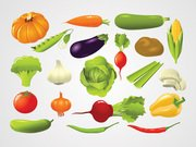 Vegetable Vector Illustrations (Free)